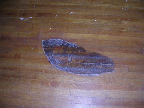 Damaged Wood Floor