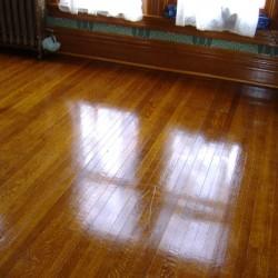 Shellac Floor